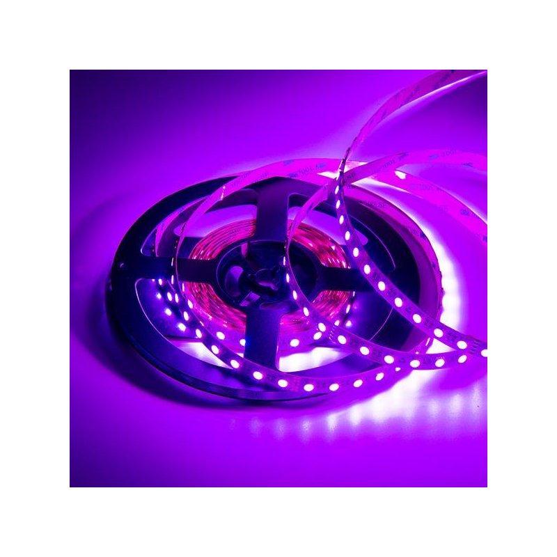 rgb w led band flexibel 12volt mit 72 smd led pro meter. Black Bedroom Furniture Sets. Home Design Ideas